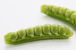 early summer peas