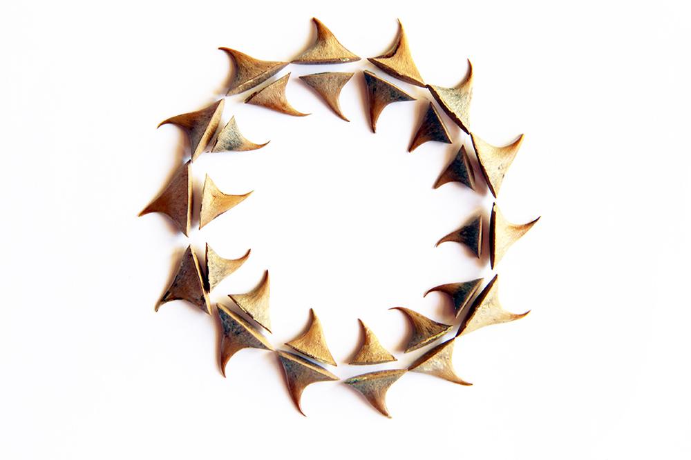 bracelet of thorns