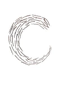 twig doodle
