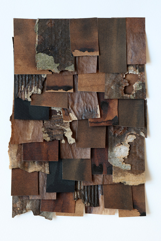 shingled collage: brown