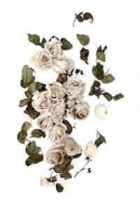 linen roses