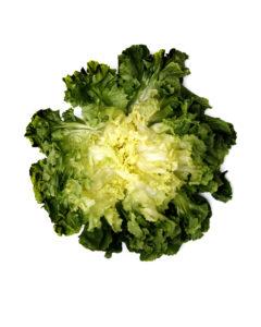 food flower