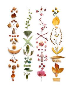 colors of autignac