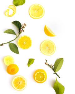 where lemons grow