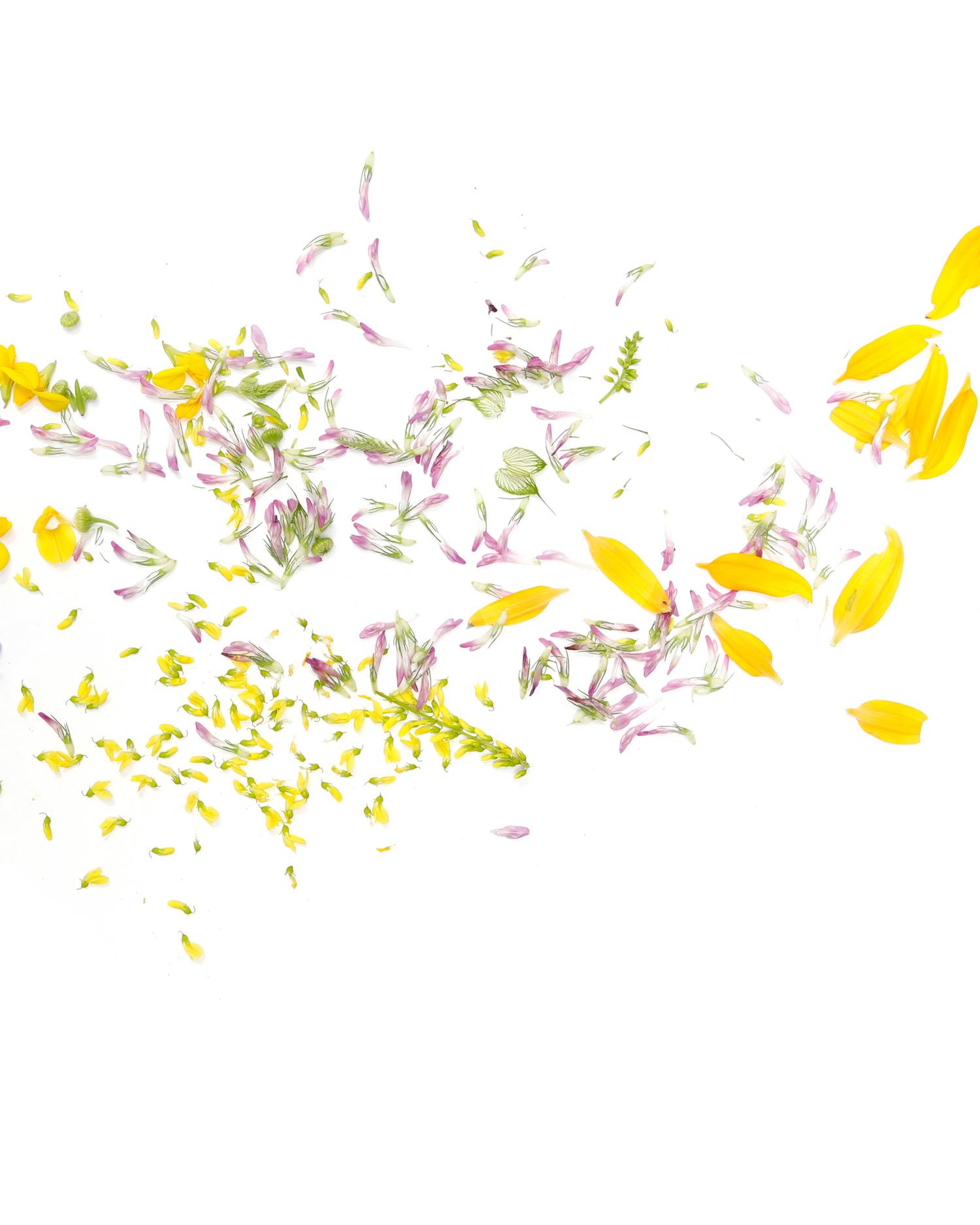 botanical confetti